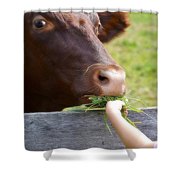 Childs Helping Hand Shower Curtain