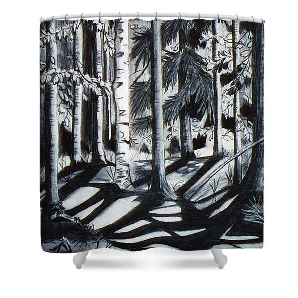 Take The Maine Path Shower Curtain