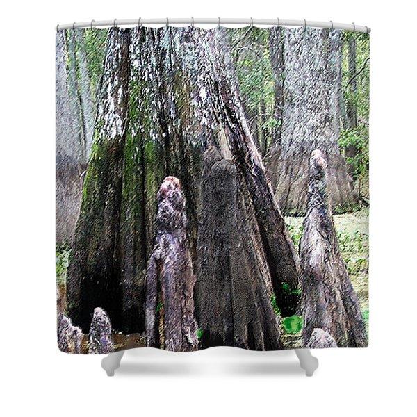 02102015 Honey Island Swamp Shower Curtain