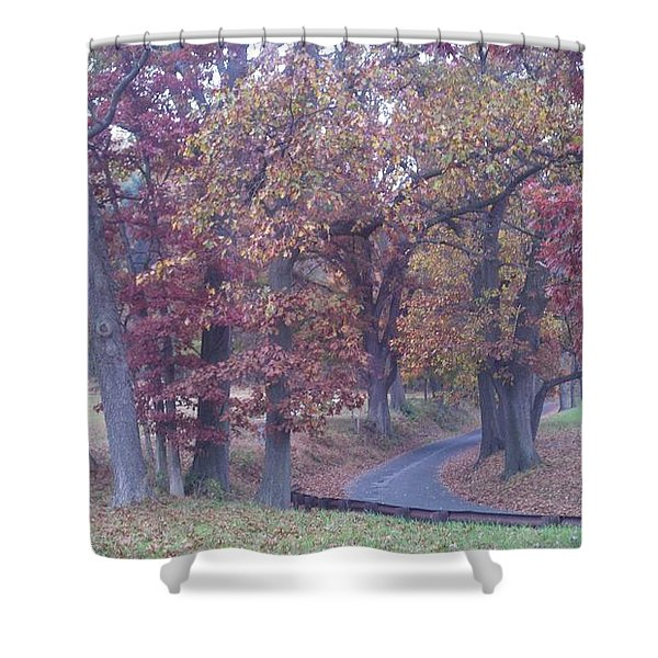 A Path To Follow Shower Curtain