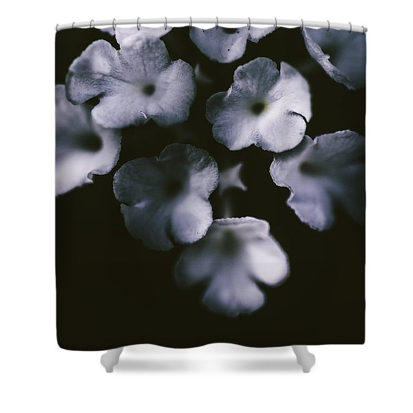 Artistic Dark Blue Flowers In Night Winter Garden Shower Curtain