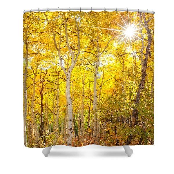 Aspen Morning Shower Curtain
