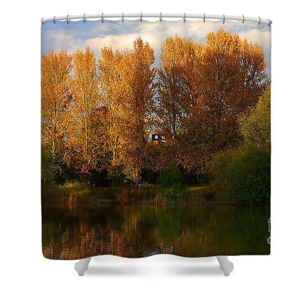 Shower Curtain featuring the photograph Autumn Trees by Jeremy Hayden