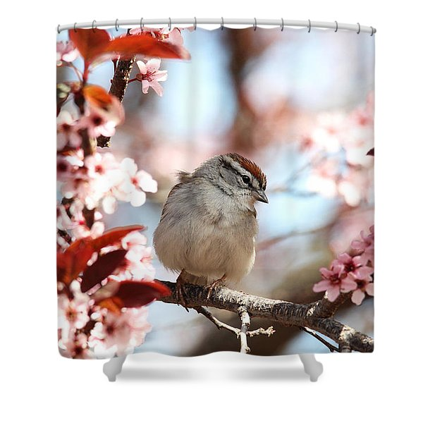 Beautiful Sparrow Shower Curtain