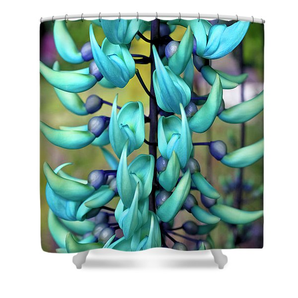 Blue Jade Plant  Hawaii, United States Shower Curtain