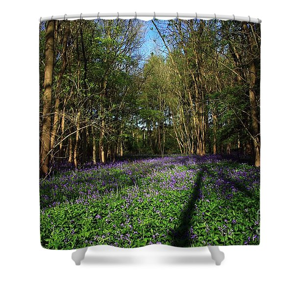 Shower Curtain featuring the photograph Bluebells by Jeremy Hayden