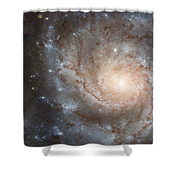 Cabbage With Galaxy And Pink Flowers Shower Curtain