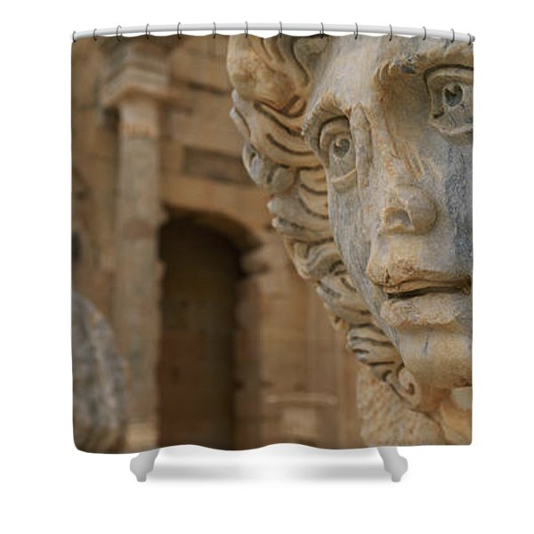 Close-up Of Statues In An Old Ruined Shower Curtain
