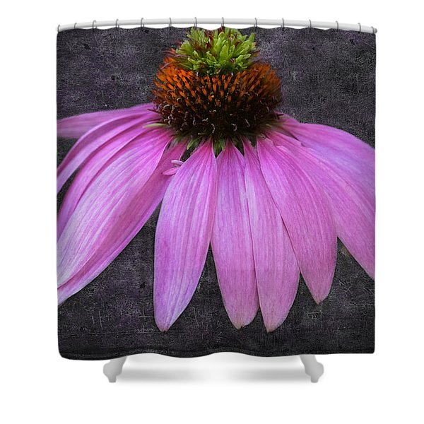 Cone Flower Shower Curtain