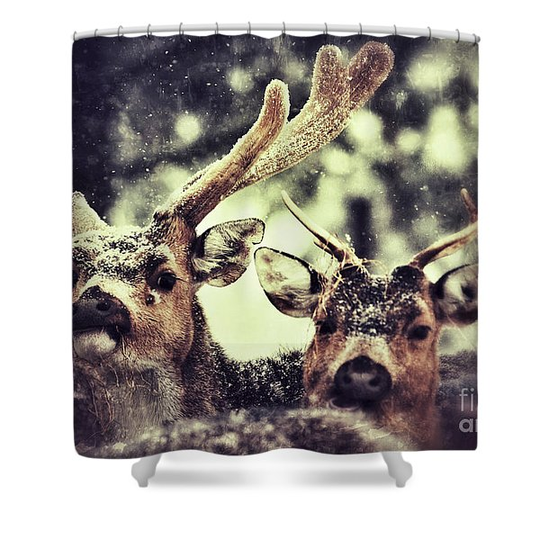 Deer In The Snow Shower Curtain