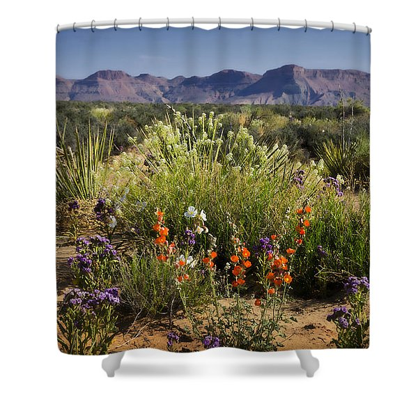 Desert Wildflowers Shower Curtain