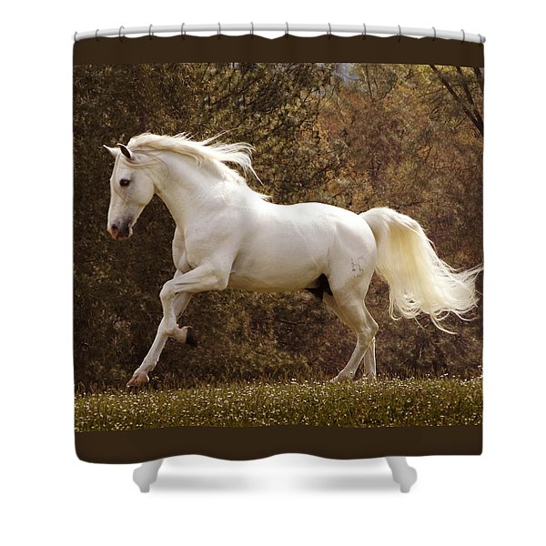 Shower Curtain featuring the photograph Dream Horse by Melinda Hughes-Berland