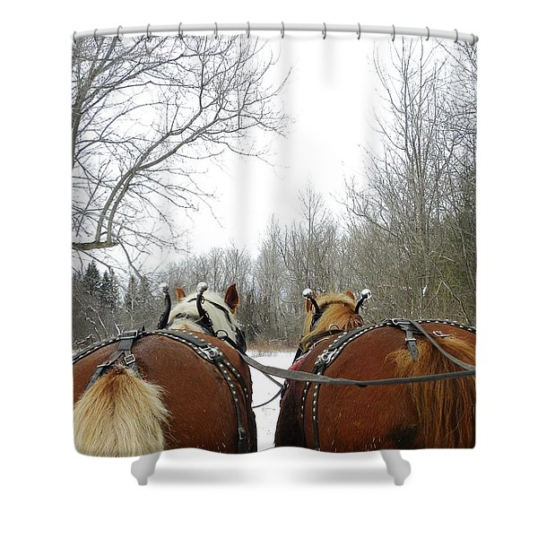 Gee And Haw Shower Curtain