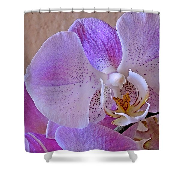 Grace And Elegance Shower Curtain