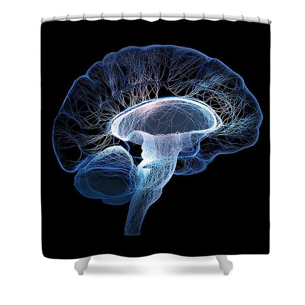 Human Brain Complexity Shower Curtain