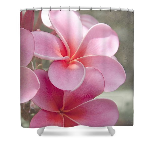 In The Path Of A Dream Shower Curtain