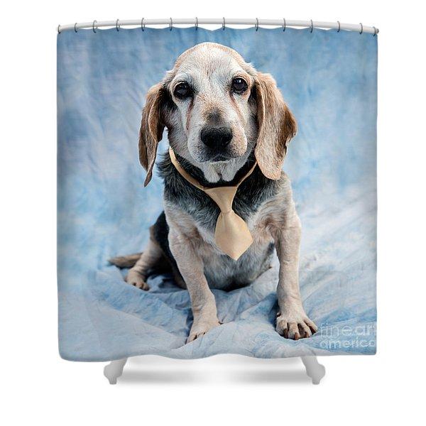 Kippy Beagle Senior Shower Curtain