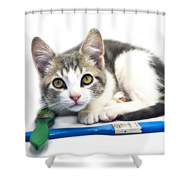Kitten With Paint Brushes Shower Curtain