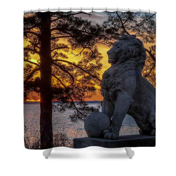 Lion At Sunset Shower Curtain
