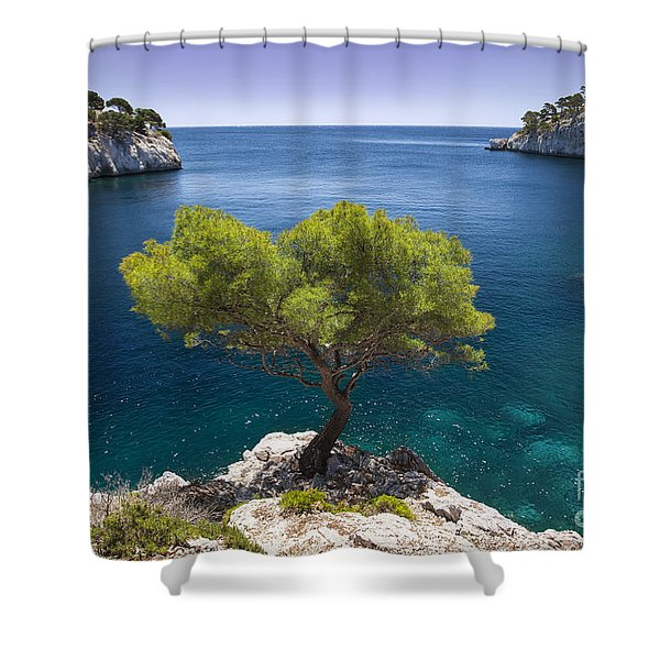Shower Curtain featuring the photograph Lone Pine Tree by Brian Jannsen