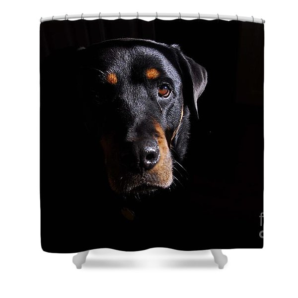Mandy Shower Curtain