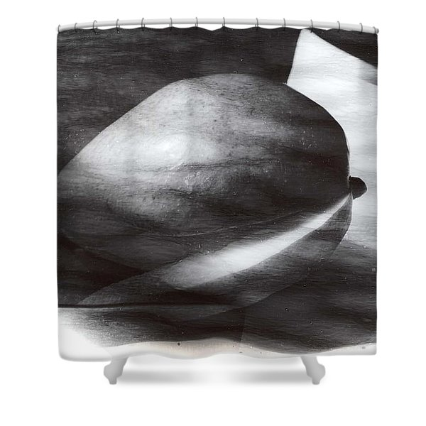 Shower Curtain featuring the photograph Mango by Karin Thue
