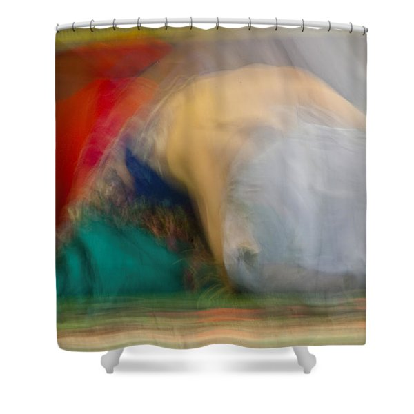 Mideastern Dancing Shower Curtain