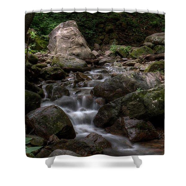 Parfrey's Glen Creek Shower Curtain