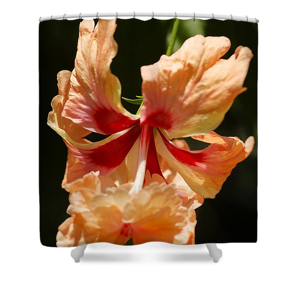 Peach And Red Flower Shower Curtain