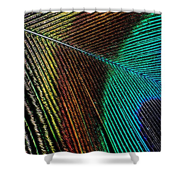 Peacock Feather Shower Curtain