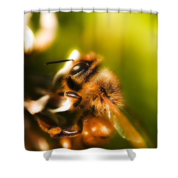 Process Of Pollination Shower Curtain
