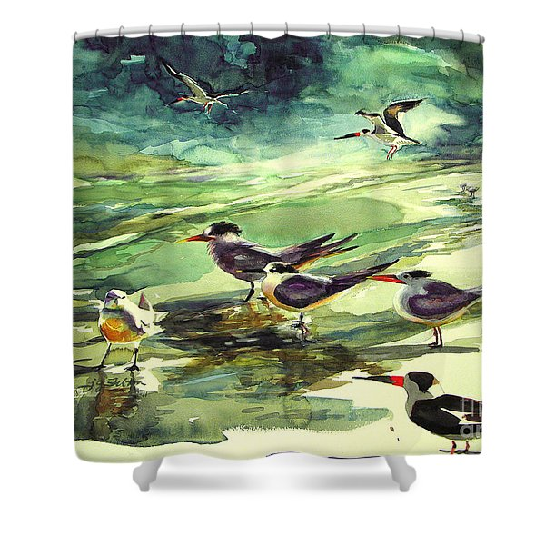 Royal Terns And Black Skimmers Shower Curtain