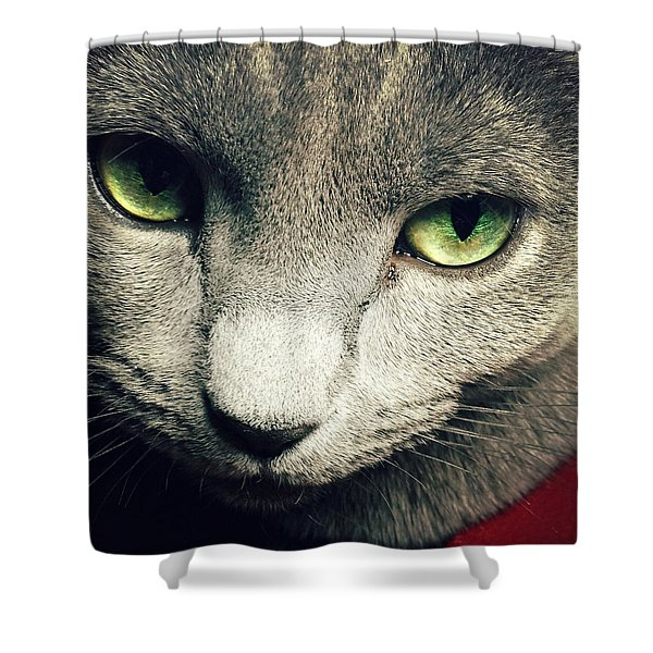 Russian Blue Shower Curtain