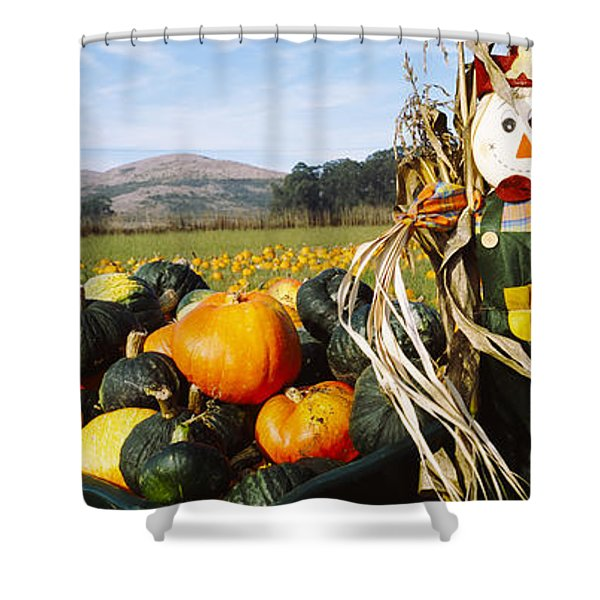 Scarecrow In Pumpkin Patch, Half Moon Shower Curtain