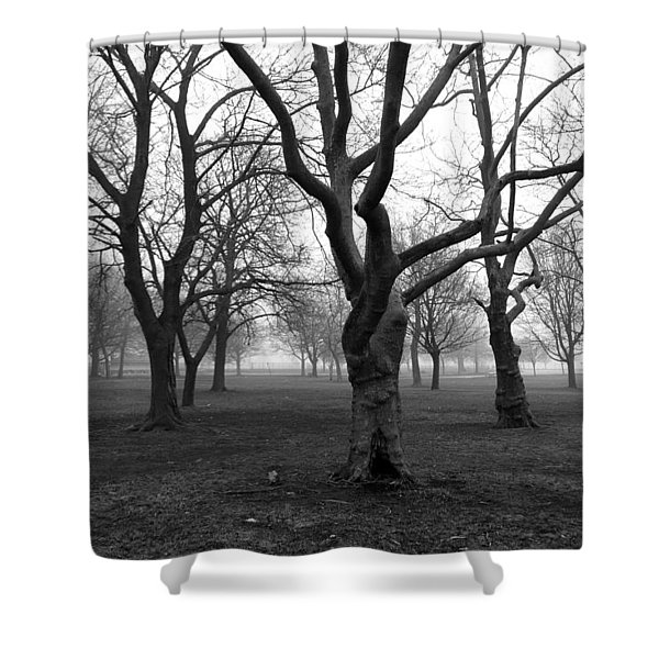 Seaside By The Tree Shower Curtain