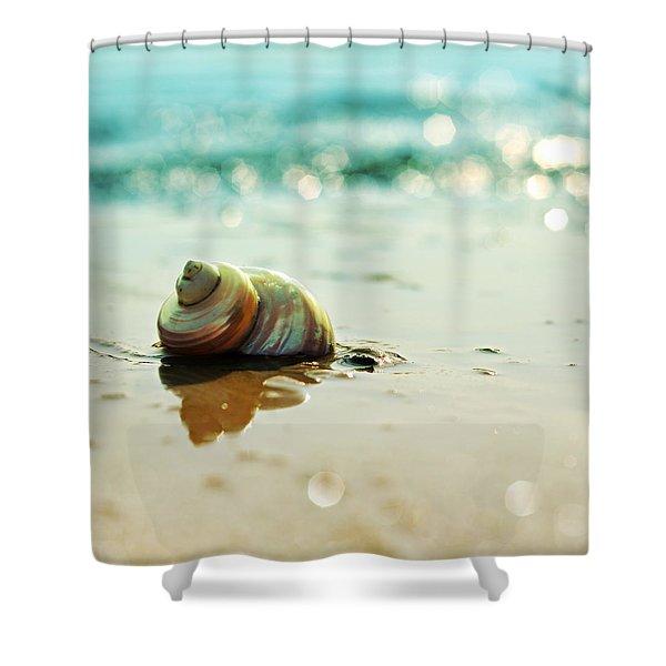 Shore Dweller Shower Curtain