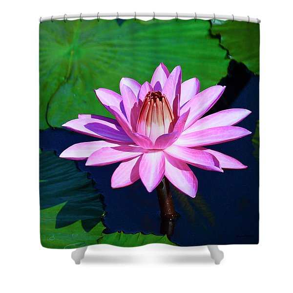 Pink Waterlily Shower Curtain