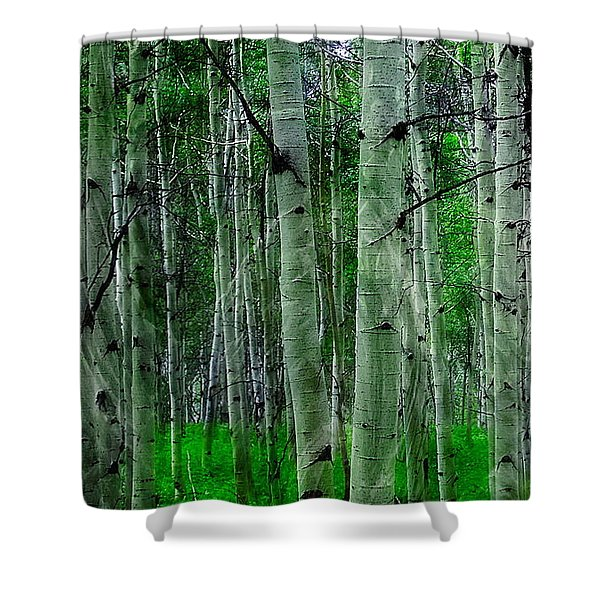 Spectacular Aspens Shower Curtain