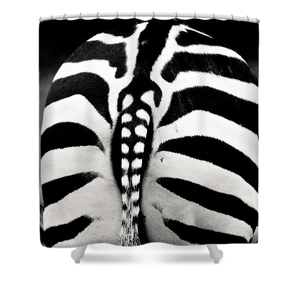 Striped Rear View Shower Curtain