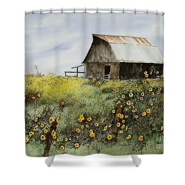 Summer Ballet Shower Curtain