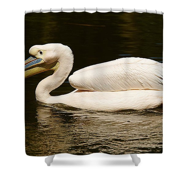 Swimming Pink Pelican Shower Curtain