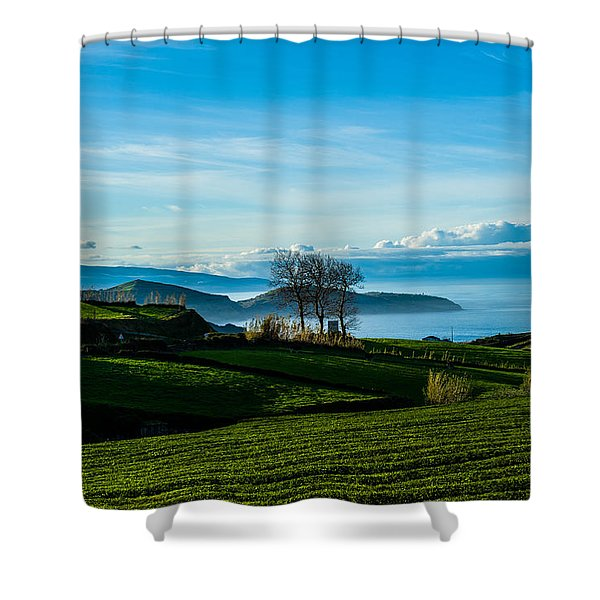 Tea Trees Shower Curtain
