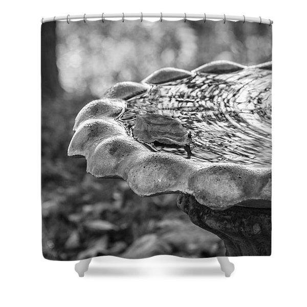 Shower Curtain featuring the photograph Tennessee Birdbath by Carolyn Marshall