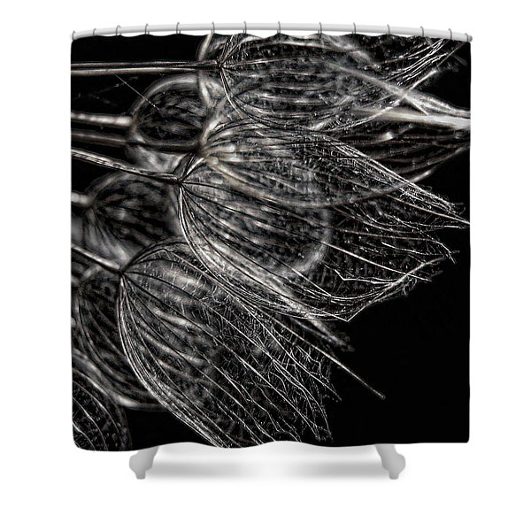 Silver Flowers Shower Curtain