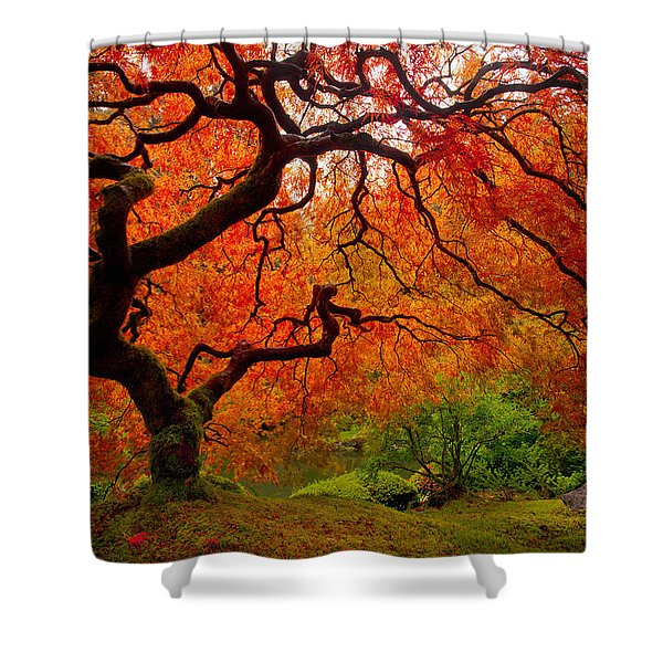 Tree Fire Shower Curtain