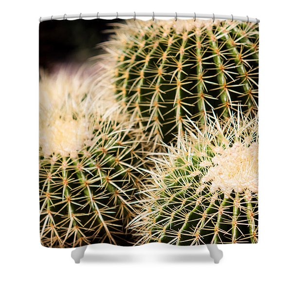 Shower Curtain featuring the photograph Triple Cactus by John Wadleigh