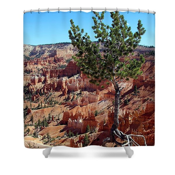 Shower Curtain featuring the photograph Twisted by Jemmy Archer
