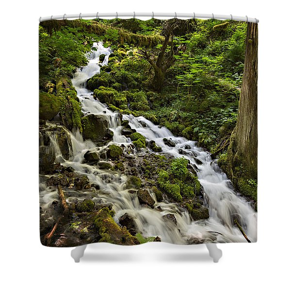 Shower Curtain featuring the photograph Wahkeena Creek by Mary Jo Allen