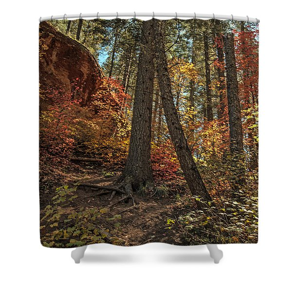 West Fork Fall Color Shower Curtain