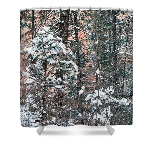 West Fork Snow Shower Curtain